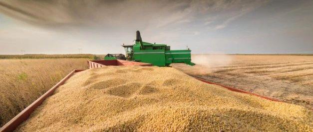 远东的大豆熟了 优德这土财主荷包里的货可不少